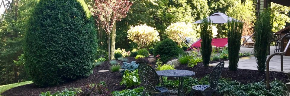 hillside patio seating with plantings